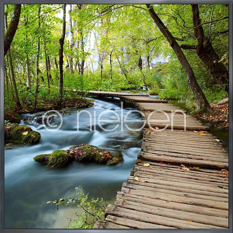 "Image encadrée ""Footprint Forest"" avec cadre en aluminium Alpha"