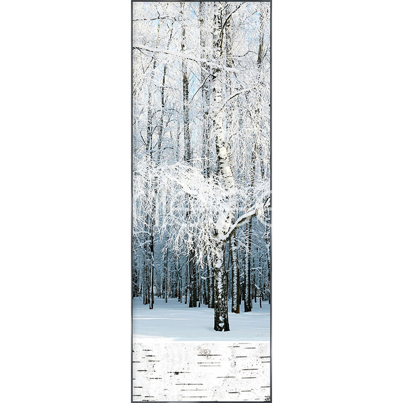 """Image encadrée """"Birch Forest Snow"""" avec cadre en aluminium Alpha"""
