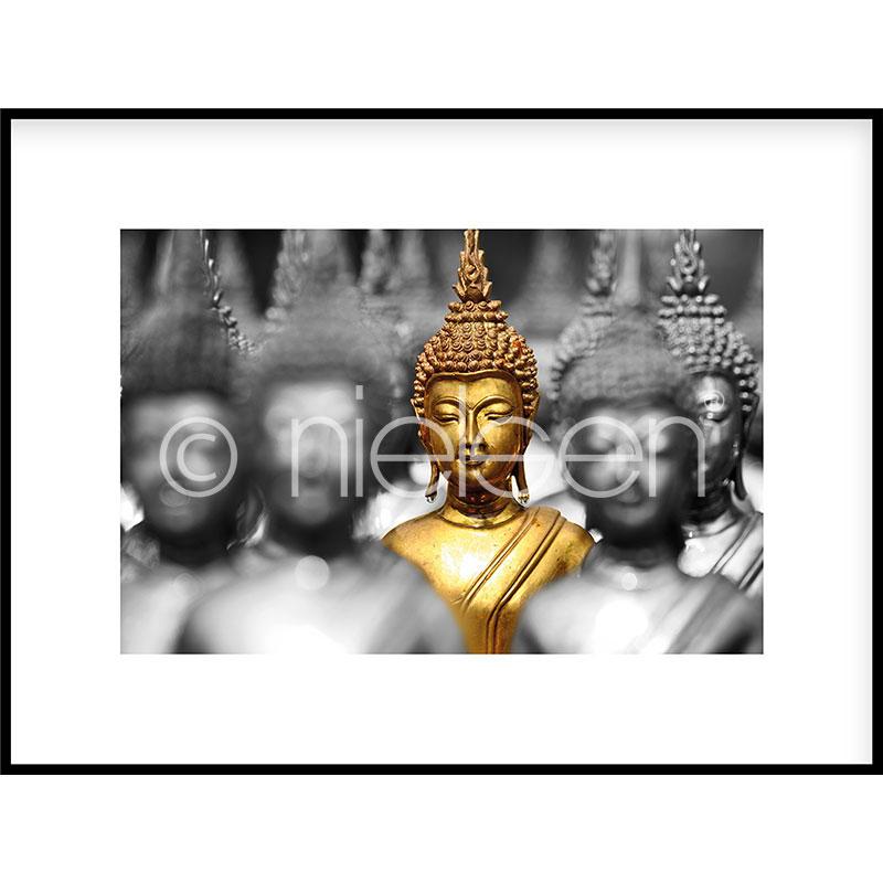 "Image encadrée ""Buddha in gold"" avec cadre en aluminium C2"